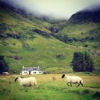 Природа Шотландии \/ Nature of Scotland